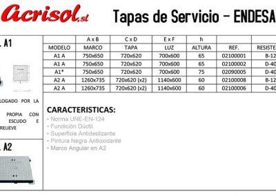 05-Tapas-de-Servicio-ENDESA